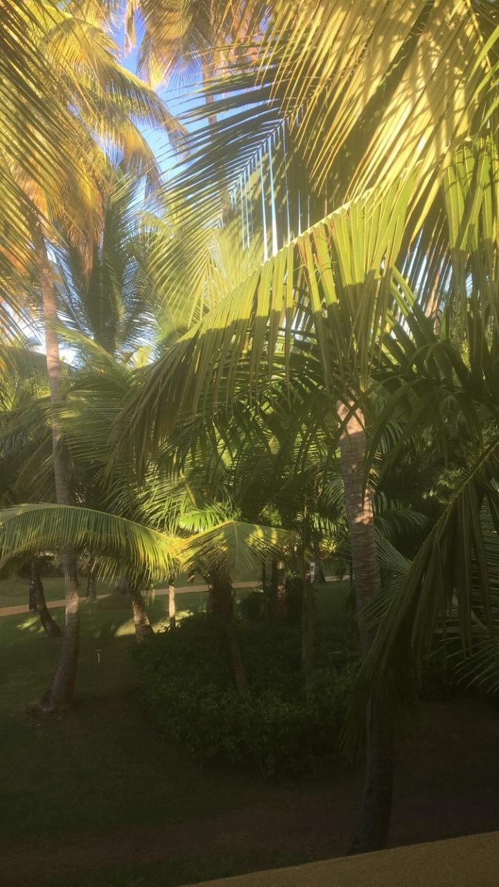 Punta Cana-Dominican Republic Trip2017