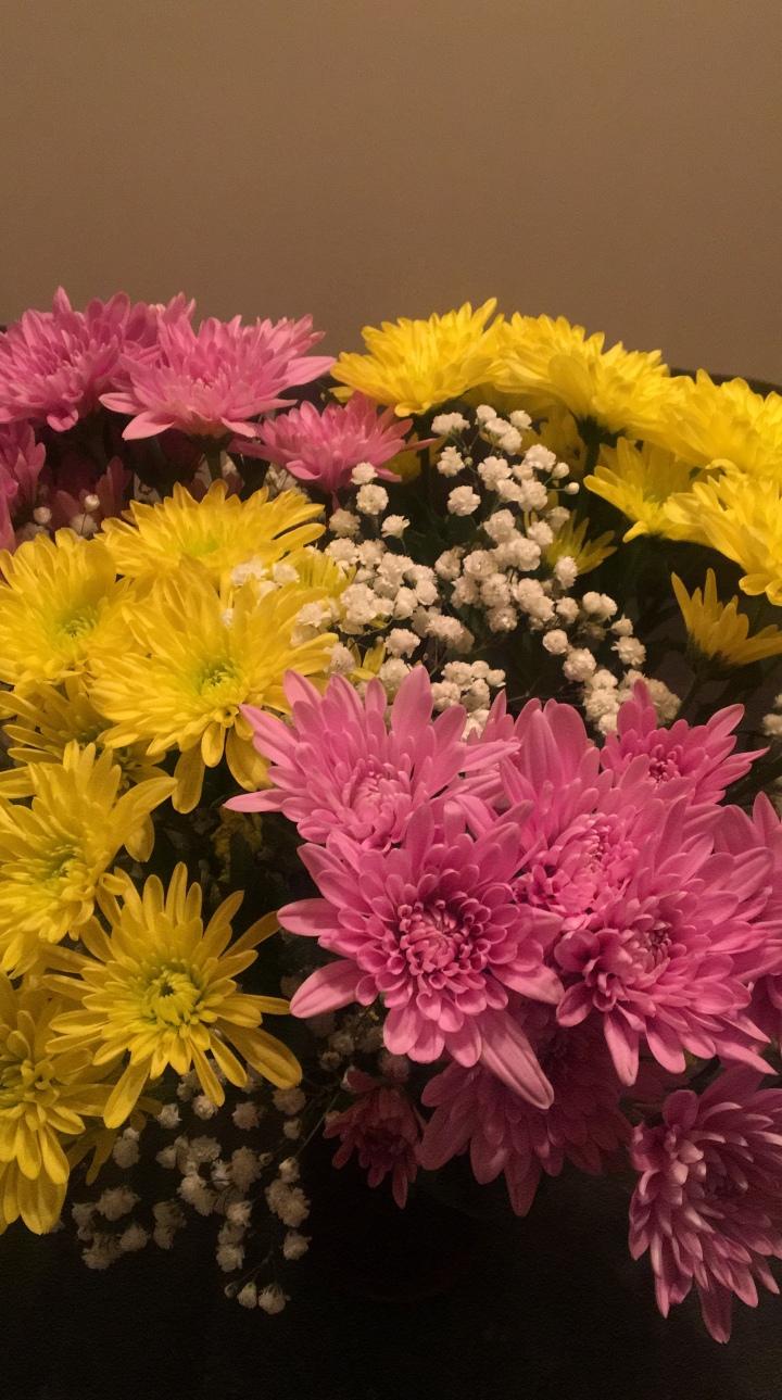 inflorescence & night-bloomer